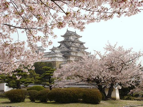 Япония Лютого Реферат Сайт школи №  Япония Вместо предисловия